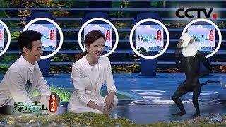 [绿水青山看中国] 李思思:人家对牛弹琴 我们对猴说话   CCTV科教