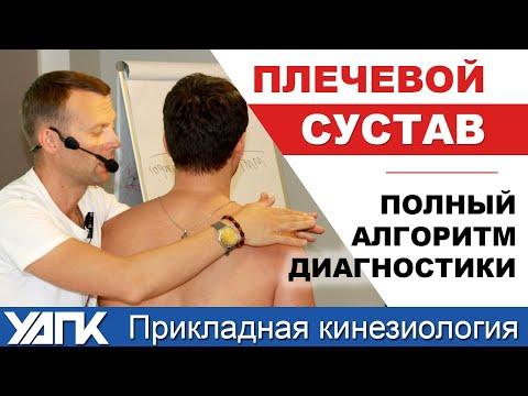 Полный алгоритм диагностики плеча (М.Савиных)