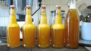 Gambar cover Beginners Guide To Fermentation: Bottling + Flavoring Kombucha