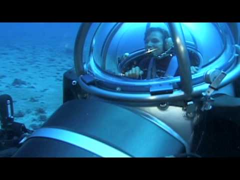 This is Us:  Sylvia Earle