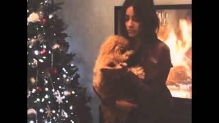 絲凱Skye(Chloe Bennet) 與狗共舞 dancing with dog  神盾局特工 Agents of S.H.I.E.L.D. Thumbnail