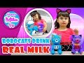Robots can drink milk! Robocats Zoomer Meowzies Patches and Lucky drink milk   HappyMilaTV #318