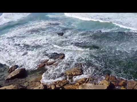 """VLOG- Work & Travel Australia - SYDNEY-""""Ocean love"""""""