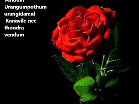 Uyirin Uyire - Thaandavam *with lyrics*