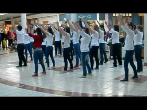 flash mob at the mall of new hampshire
