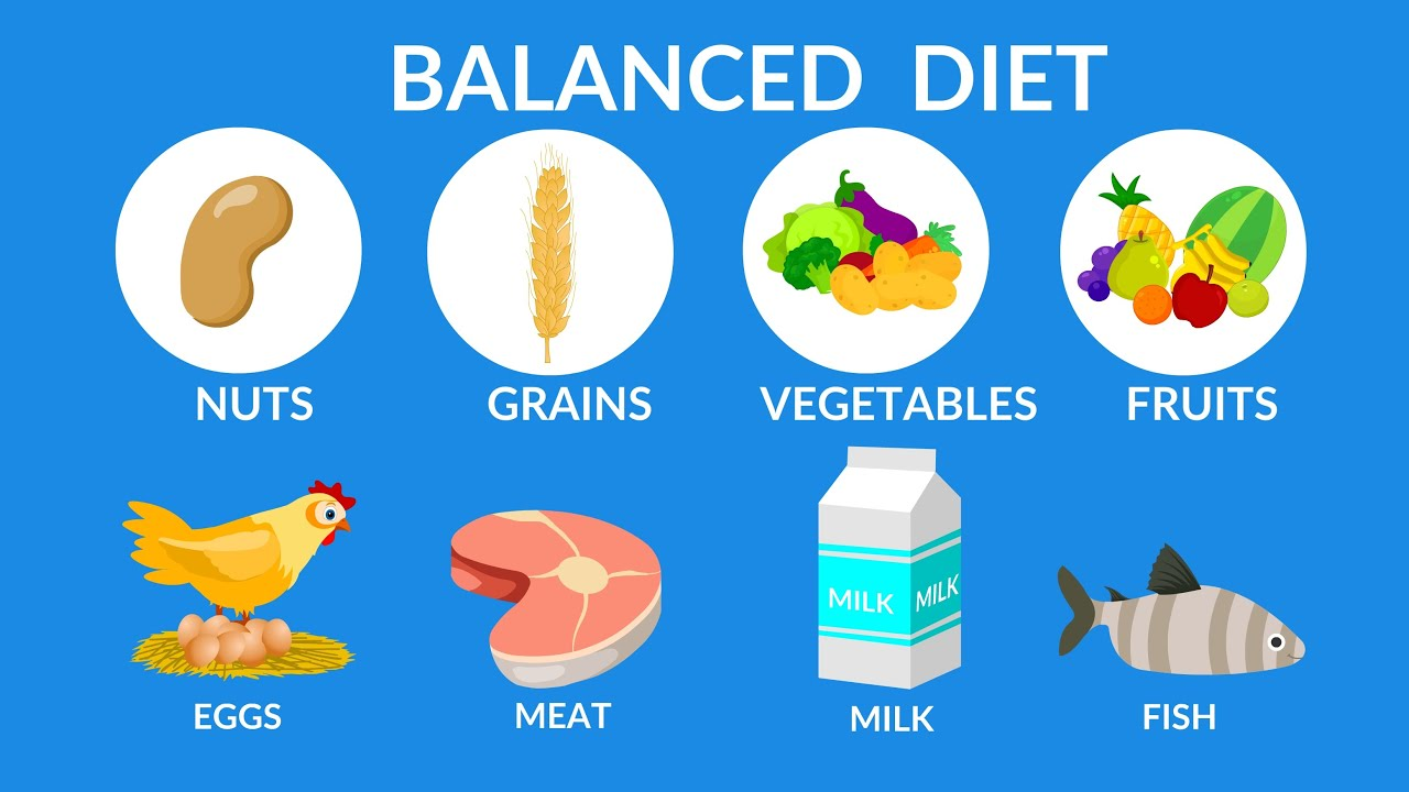 Balanced Diet Best Food For Health Youtube