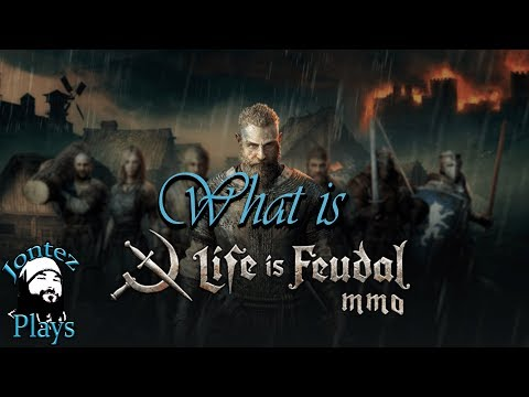 What is Life Is Feudal MMO? Beginner guide plus tricks and tips.