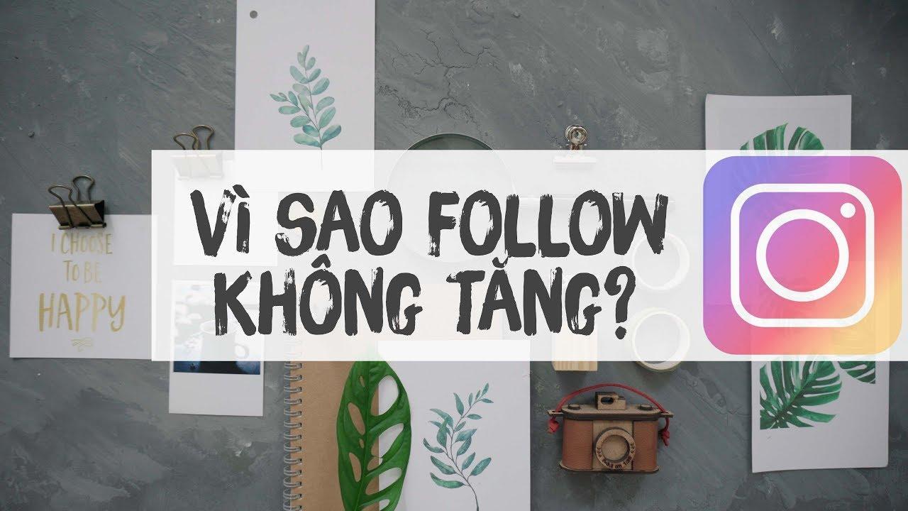 Vì sao Instagram Không Tăng Follow? Giải pháp !