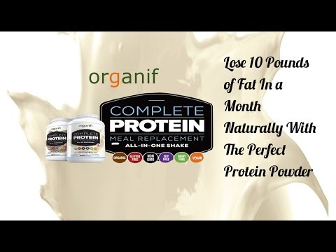 Best Protein Powder For Weight Loss   Orgainifi Complete Protein Meal