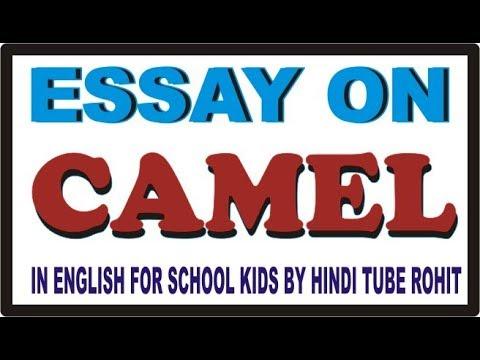 the camel essay