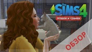 Симс 4 ПИТОМЦЫ обзор : геймплей | Симс 4 Кошки и Собаки | Sims 4 Cats and Dogs