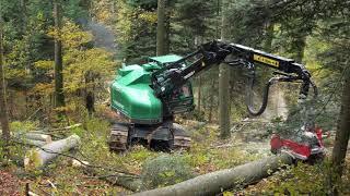 Jenni Holz AG   Neuson Harvester bei der Arbeit