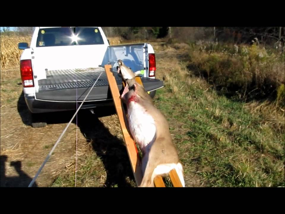 Loading The Deer Youtube