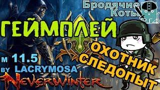 Neverwinter - Бонус к гайду / Геймплей / Охотник-Следопыт м.11.5 / Бродячие Коты