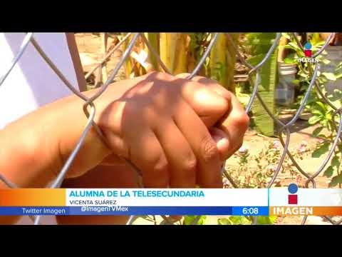 Suspenden clases en 200 escuelas de Acapulco por violencia | Noticias con Francisco Zea