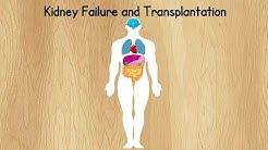 hqdefault - First Kidney Transplant In Canada