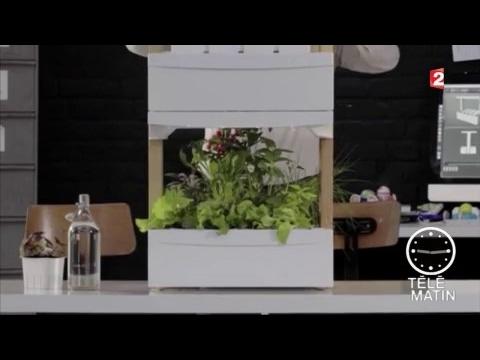 bon co ts fresh square le meuble potager d int rieur. Black Bedroom Furniture Sets. Home Design Ideas