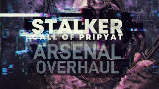 S.T.A.L.K.E.R. CoP #2 : Arsenal Overhaul mod chill