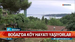 Boğaz'da köy hayatı yaşıyorlar - Atv Haber 14 Temmuz 2019