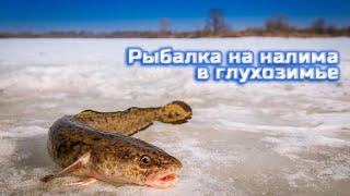 Зимняя рыбалка на налима в глухозимье (2020)