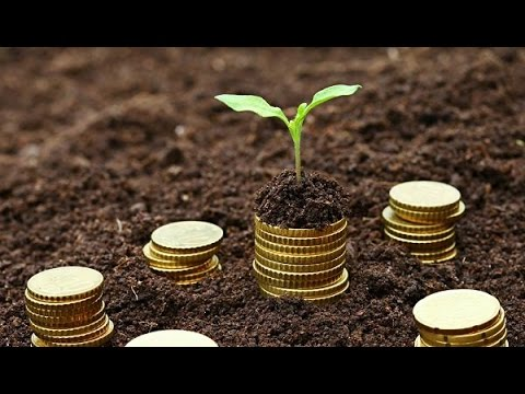 Royalty Financing -- Business Funding Tip
