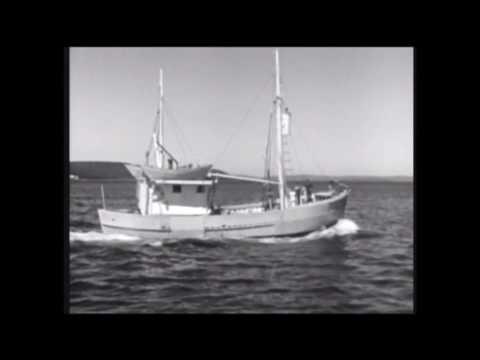Encounter At Trinity Newfoundland, Fir Fishing
