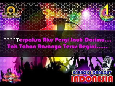 SEJUTA LUKA - Rita Sugiarto (Karaoke Dangdut Indonesia)