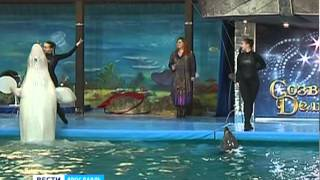 В ярославском дельфинарии заговорил полярный кит(, 2014-11-25T17:49:34.000Z)