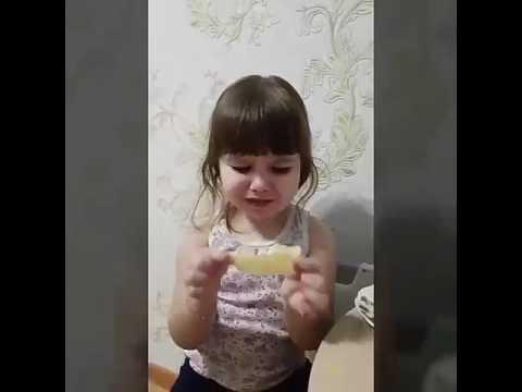 Дети едят лимон. -