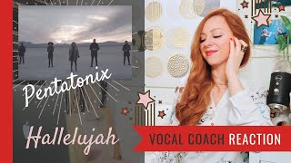 Pentatonix Hallelujah Reaction - Vocal Coach Reaction