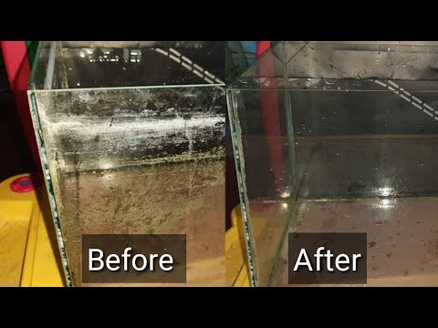 Fastest Way To Get Rid Of The Hardest Calcium Build-up(Water Stains) In A Fish Tank