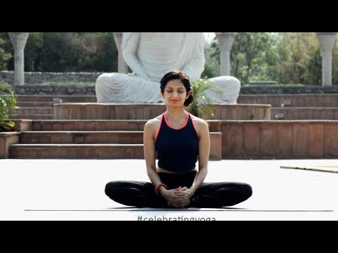 Celebrate Yoga - International Yoga Day thumbnail