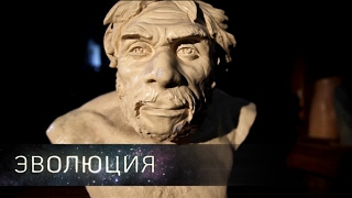 Как мы стали людьми  Эволюция