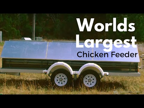 Worlds Largest chicken feeder