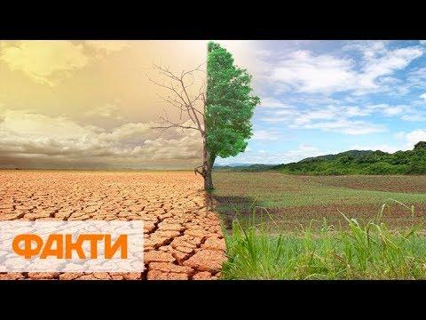 Глобальное потепление. Киев через 50 лет будет в субтропиках