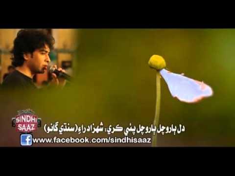 Loorh Manhja Lorhndi ( Sindhi Song) shehzad roy - sindhi saaz