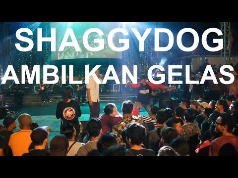 Shaggydog - Ambilkan Gelas - Live in FKY 29 Kota Jogja (2017)
