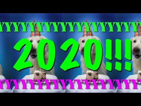 happy-birthday-2020!---epic-happy-birthday-song
