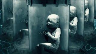 """クローン技術により誕生した新生児""""エリザベス""""をめぐり、遺伝子研究に..."""