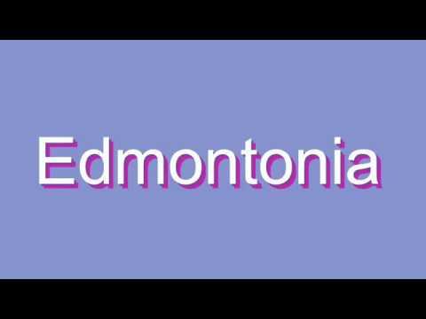 How to Pronounce Edmontonia