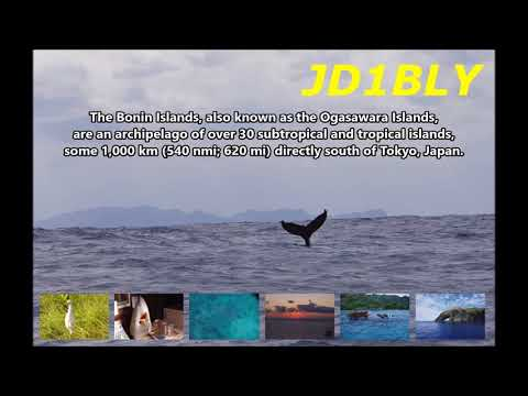 JD1BLY Chichi Jima Island Ogasawara Islands. From dxnews.com