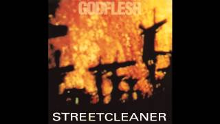 Godflesh - Locust Furnace