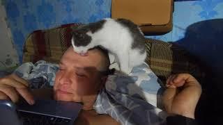 Просто будни\\Мальчишки на секции\\Брелок мишка\\очень ласковая Мурка\\Перепёлки\\