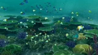 Endless Ocean: Blue World -- Nineball Island (Night)