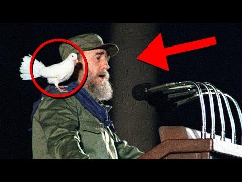 Fidel Castro Curiosidades de su vida