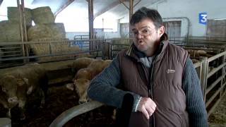 SIA 2015 : Etat des lieux de la filiere bovine en Languedoc-Roussillon
