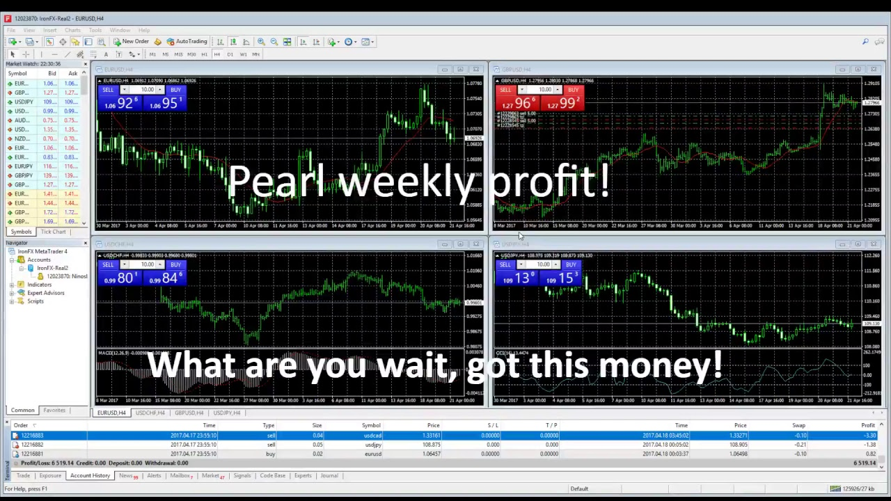 Forex flow live