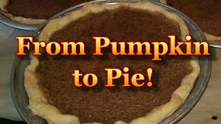 Pumpkin Pie! From Pumpkin To Pie!