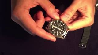 Seiko Sport 5  Made In Japan : Eight Months Later!! You Won't Believe This!!