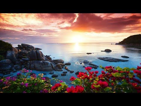 Relaxing Harp Music: Stress Relief, Sleep, Meditation, Spa   Instrumental Background Music ★69